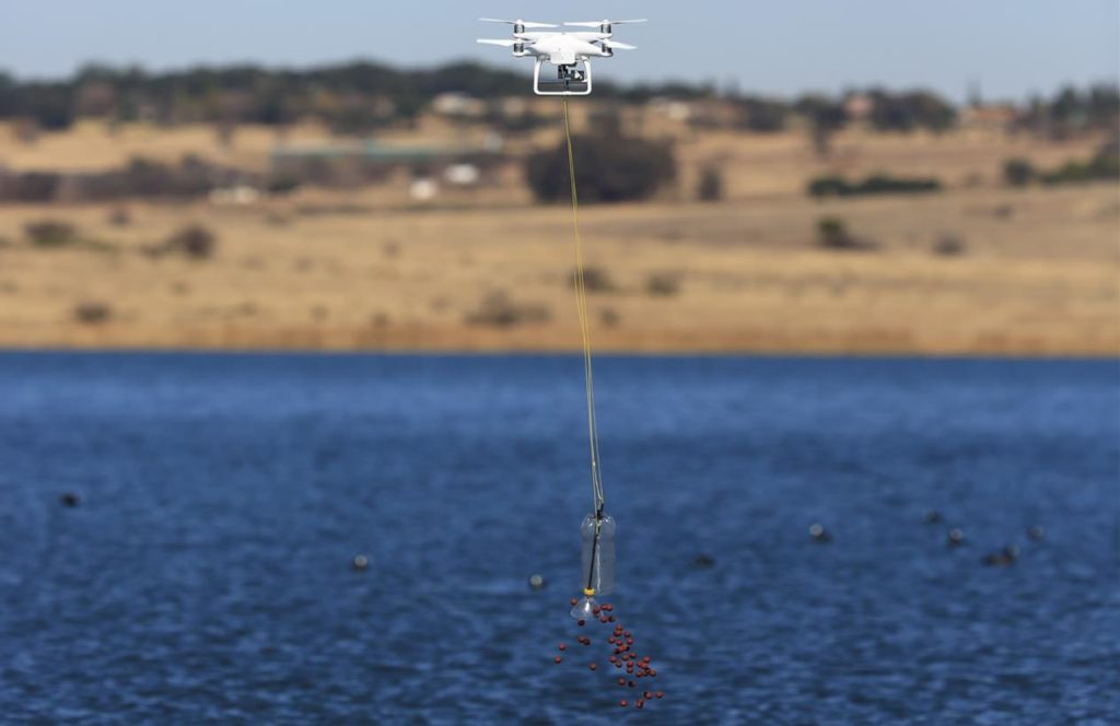 drones for fishing